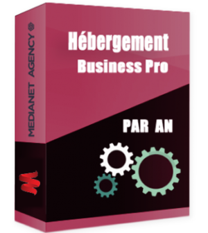 Hébergement Business Pro par an