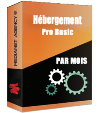 Hébergement Pro Basic par mois