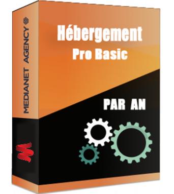 Hébergement Pro Basic par an